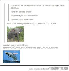 If animals were named after the sound they make…I'm laughing so hard and I don't know why