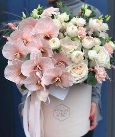 Beautiful Bouquet Of Flowers, Beautiful Flower Arrangements, Floral Arrangements, Beautiful Flowers, Love Flowers, Flower Box Gift, Flower Boxes, Flower Centerpieces, Flower Decorations