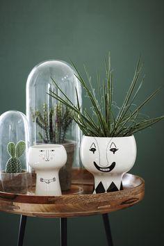 Ces pots qui mettent les plantes en tête-à-tête.