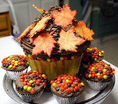 Giving Thanks! giant cupcake w leaves and cupcakes