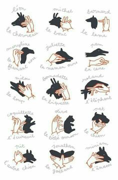 hand shadows / shadow puppet show - illustration camille chauchat Shadow Art, Shadow Play, Diy For Kids, Cool Kids, Crafts For Kids, Shadow Puppets With Hands, Hand Shadows, Puppet Show, Hand Puppets