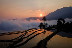 Yuanyan #2 - Another from the rice terraces at Duoyishu in Yuanyang County, Yunnan. Taken just after sunrise on the x100s.