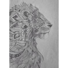 Aztec lion. Took ages to complete as it had so much detail! For more of my drawings follow my Instagram- katielmckay