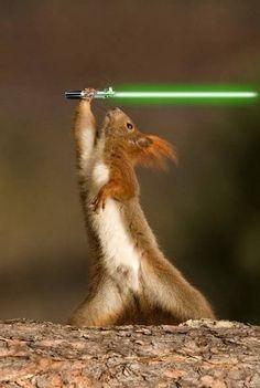 I've got the (Jedi) POWER!