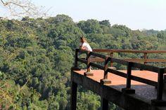 Parque da cantareira/ Brasil, parque, natureza e muito mais!