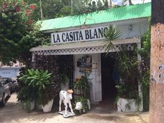 La Casita Blanca 351 Calle Tapia San Juan, Puerto Rico 00933 Everyone says this place has amazing Authentic Puertorican food!! Gotta check it out next time I'm there…