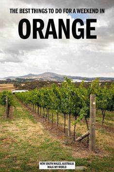 Things to do in Orange, NSW for the perfect weekend break — Walk My World Brisbane, Melbourne, Sydney, Great Barrier Reef, Thailand Travel, Croatia Travel, Hawaii Travel, Australia Travel Guide, Travel Guides