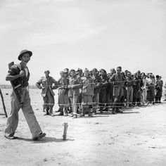 A soldier guards a group of German and Italian prisoners taken at Noto, 12 July 1943.