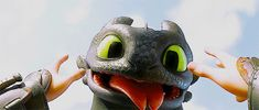 Hiccups point of view Cute Toothless, Toothless And Stitch, Toothless Dragon, Hiccup And Toothless, Hiccup And Astrid, Httyd Dragons, Dreamworks Dragons, Dreamworks Animation, Disney And Dreamworks