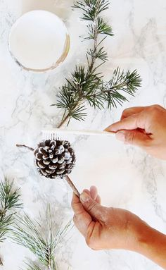 DIY Snow Covered Pine Cones & Branches Ways!}Want some winter magic? These DIY snow covered pine cones & branches will instantly transport you to an enchanted snowy wonderland! Pine Cone Christmas Decorations, Christmas Pine Cones, Christmas Table Centerpieces, Diy Christmas Ornaments, Christmas Projects, Simple Christmas, Christmas Crafts, Christmas Christmas, Wedding Centerpieces