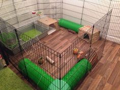 Spiffy Large Indoor Rabbit Hutch Ideas For Keeping Your Pet Rabbit Happy, Healthy and hopping around your home. Including diy bunny cages, rabbit runs and bunny yards. Check out our indoor rabbit hutch. When these bunnies are not sprinting about the Diy Bunny Cage, Diy Bunny Toys, Bunny Cages, Rabbit Cages, House Rabbit, Rabbit Cage Diy, Rabbit Pen, Pet Rabbit, Indoor Rabbit Cage