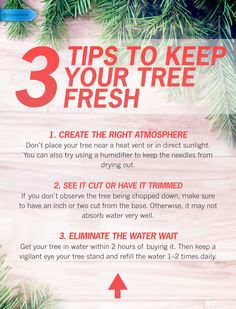 Because your Xmas tree shouldn't dry out before the holiday celebrations do. #SaveMoney #DIYHome #HouseholdTips #FreshHolidays #XmasTreeTips