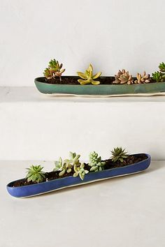 would love this canoe planter on our table out back! #Anthropologie #PinToWin