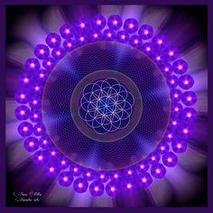 Mandala violeta Llama violeta
