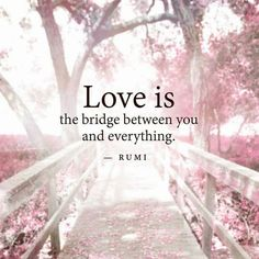 "soulmates-twinflames: "" Love is the bridge between you and…"