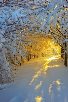 Se creo la luz y la nieve..... que explendor !!