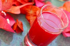 "Amazing Apple Beet Grapefruit Juice ""Ruby, Don't Take Your Juice To Town"" Morning Cleansing JuiceLooking for detox juice fasting recipes? This simple grapefruit and beet juice is a SENSATIONAL liver tonic and a fabulous addition to a Spring Juice Cleanse. 5 Day Juice Cleanse, Juice Cleanse Recipes, Detox Smoothie Recipes, Good Smoothies, Juice Smoothie, Juice 3, Vitamix Recipes, Vegan Smoothies, Juice Drinks"