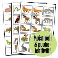 Tutustukaa kotiseudun metsäneläimiin näiden korttien avulla ja pelatkaa lopuksi muistipeliä. Merkit: luonnontuntemus, kotiseutu