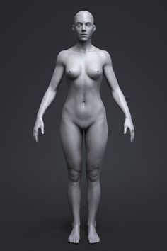 9 Best 3D Female Body images in 2017 | Zbrush, 3d anatomy