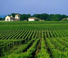 Saint-Emilion, France - one of the best red wine areas of Bordeaux