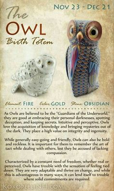 The owl birth totum
