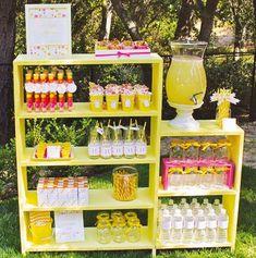 Inspiração_Mesa_Sucos_Bebidas_08