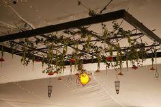 Creative idea for an overhead garden