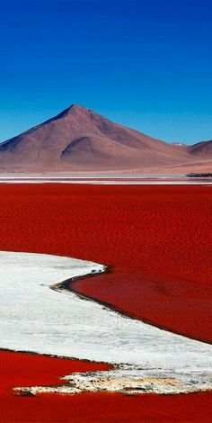 Laguna Colorado is a salt lake in Bolivia that gets its red color from pigmentation of algae