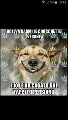 Ah ah ah