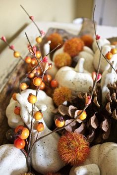 Take plastic pumpkins and gourds and paint them with neutral tones to make a beautiful fall display