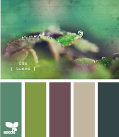 dew tones -- potential color palette for my living room/dining room/kitchen area?