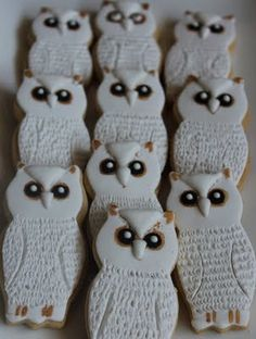 A Magical Harry Potter Party-The Food(Hedwig Cookies)