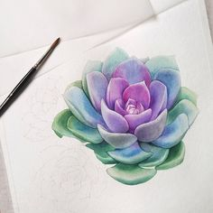 Amazing succulent watercolour ~ by Lina Gradil. Instagram @lina.gradil