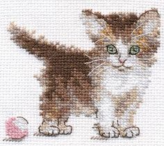 1 of 4 new unopened russian mini counted cross stitch kit alisa baby animals cubs kitten bunny hadge Cross Stitch Fabric, Cross Stitching, Cross Stitch Embroidery, Embroidery Patterns, Hand Embroidery, Cat Cross Stitches, Counted Cross Stitch Kits, Cross Stitch Patterns, Cross Stitch Animals