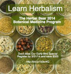 The 2014 Botanical Medicine Program Save $325 off The Herbal Bear Botanical Medicine Program See full program description here:  http://www.herbalbear.com/app14.html