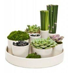 Art decor - Mondu Floral Design
