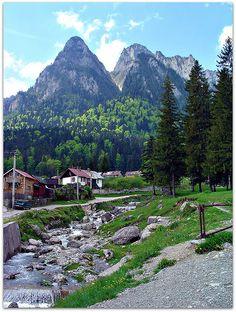 The Carpathian Mountains of Romania