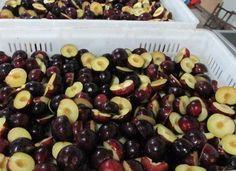 IQF plum halves or frozen plum halves - China IQF plum halves