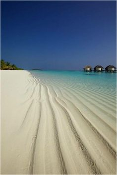 Visit the rippling white sandy beaches at Viceroy Maldives.