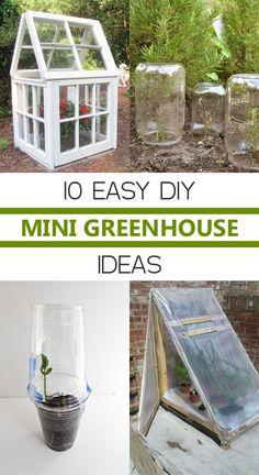 10 Easy DIY Mini Greenhouse Ideas