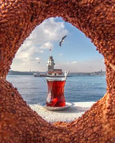 Book Istanbul Tours Directly From a Local Tour Guide. All Tour Guides are Licensed and Professional. Find Your Istanbul Tour Guide Istanbul Tours, Istanbul Travel, Travel Pictures, Travel Photos, Turkey Photos, Patagonia, Turkey Travel, Weekend Fun, Wonderful Places