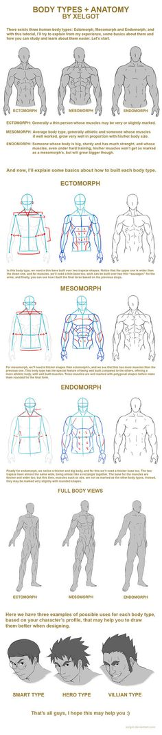 Hello, for this time, I spent all day creating this tutorial or.. body chart, wich may be a help for those who wanna learn more about body types: from thin to big and strong people. I tried to expl...