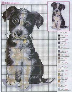 cross-stitch puppy <3 cuccioli