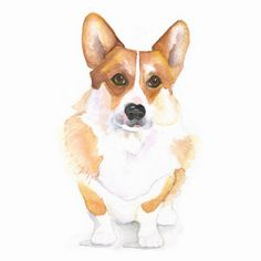Welsh Corgi Watercolor Giclee Print 8x10 Dog by PelaSkyeStudio