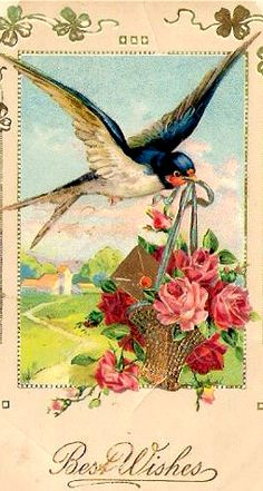 ❥ love old post cards~ bird art to use in projects. Shabby Vintage, Vintage Ephemera, Vintage Paper, Vintage Flowers, Images Vintage, Vintage Pictures, Vintage Birthday, Vintage Valentines, Vintage Printable