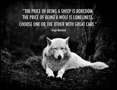 Actually, wolves are very social creatures and a line wolf typically has a very low life expectancy and experiences depression much as a human would in isolation.