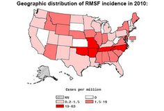 Rocky Mountain spotted fever is a disease carried by ticks that can be fatal if not treated. See pictures of the symptoms of Rocky Mountain spotted fever here. Tick Fever, Brown Dog Tick, Low White Blood Cells, Rocky Mountain Spotted Fever, Tick Bite, Severe Headache, Skin Rash, Abdominal Pain