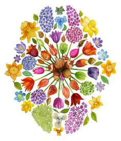Royal Horticultural Society Autumn Poster Campaign by Sarah Jane Coleman, via Behance