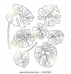 how to draw water Illustration Botanique, Botanical Illustration, Water Drawing, Line Drawing, Fabric Painting, Painting & Drawing, Leaf Outline, Stained Glass Designs, Ink Illustrations
