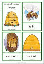 Woordkaarten Bijen - klein + lidwoorden Fauna, Kids Education, School, Beehive, Teacher, Letters, Spring, Animals, Insects